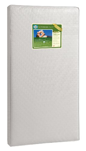Sealy Soybean Foam-Core review